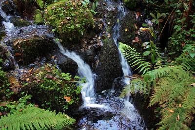 I23 Canonteign Falls
