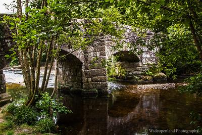 D17 Fingle Bridge