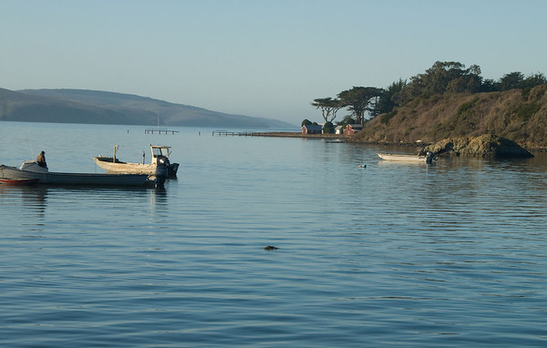 Tomales Bay Centrral California Coast, Marin headlands, fishing, bay