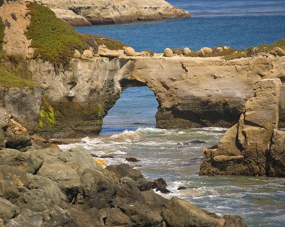 Natural Bridges, Santa Cruz Central California, California Coast