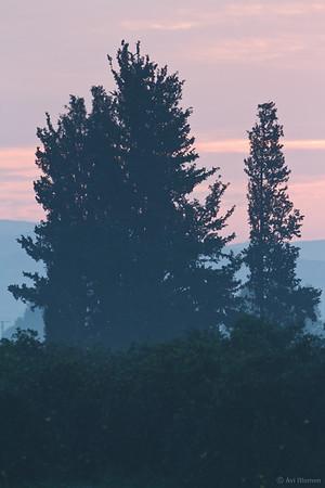 dawn on hefer valley עם עלות השחר