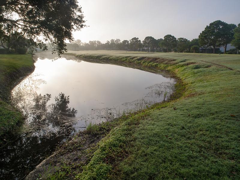 Morning at The Meadows