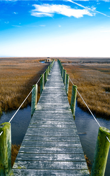 Assateague, VA