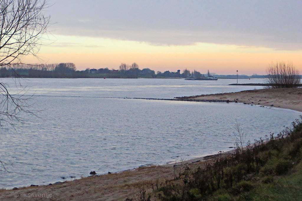 De Waal op een januarimorgen