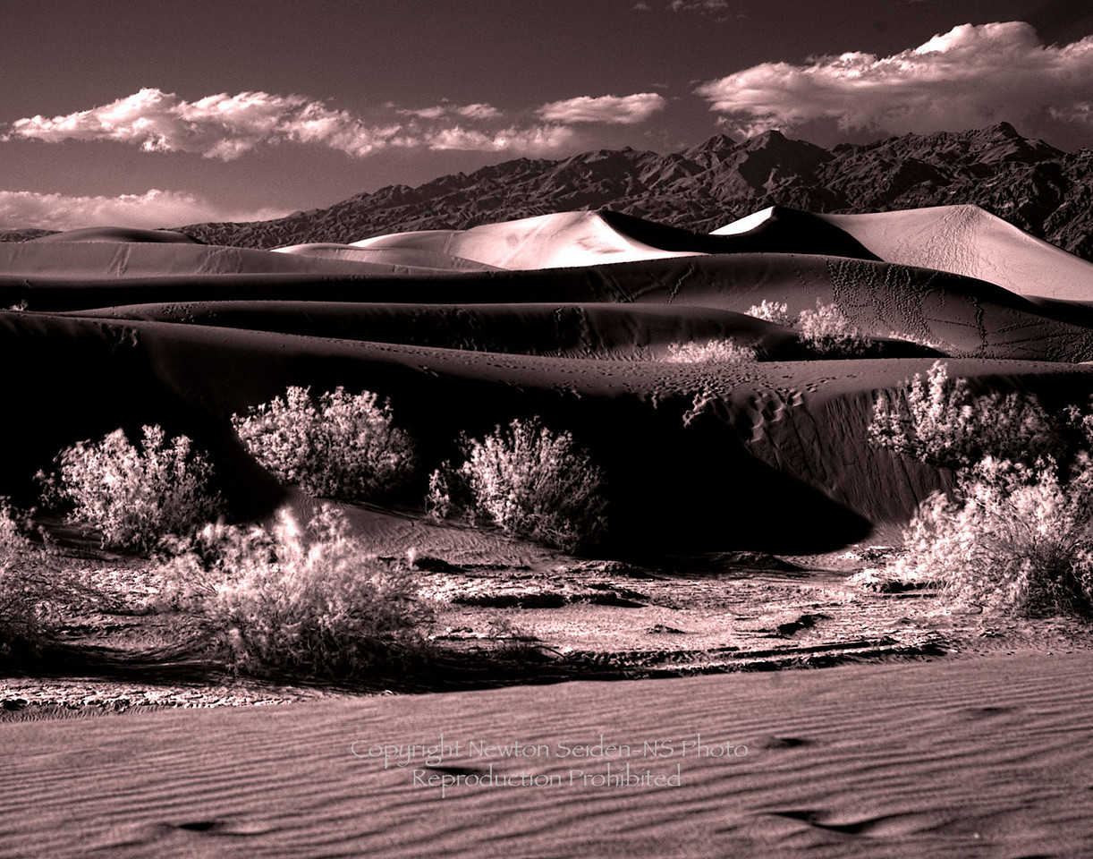 Sand Dunes<br /> Infrared Sepia