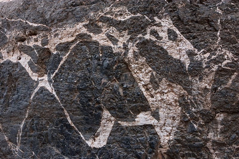 As we walked up Titus Canyon, one of the members of the workshop spotted this pattern in the canyon wall.