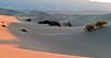 Sunrise at Mesquite Flat Sand Dunes.