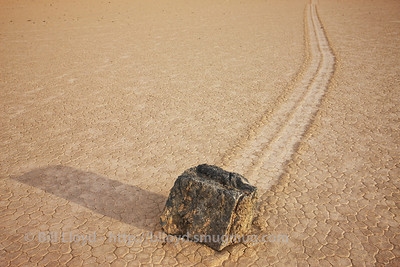 """""""The Rock"""" on The Racetrack"""