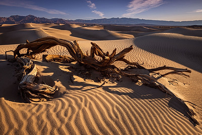 death valley-mesquite dunes-7370