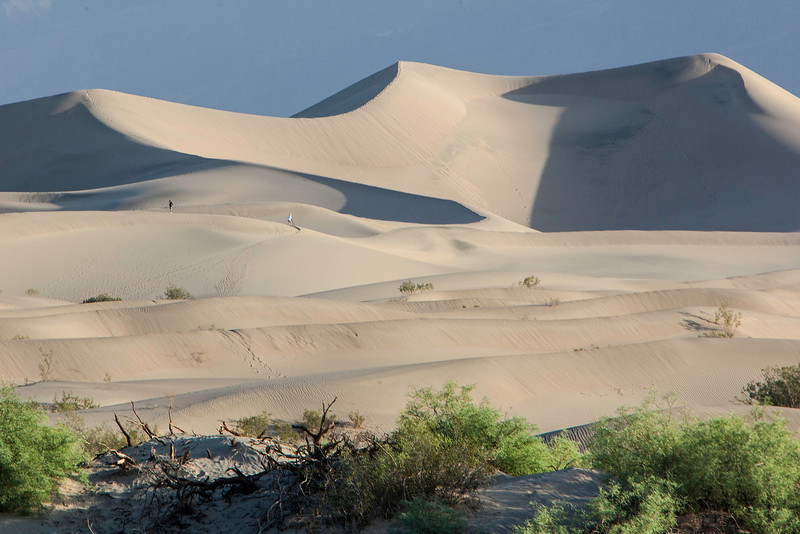 Morning at Mesquite Flat Sand Dunes