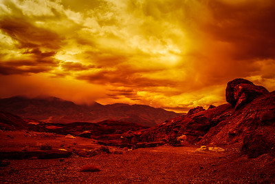 Meanwhile On The Red Planet