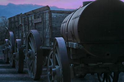20 mule wagon