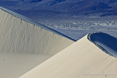 "Tracks on the ridges cause little avalanches.  The Eureka Dunes are known as ""singing"" dunes because when dry, the sand hums and booms during these mini-avalanches."