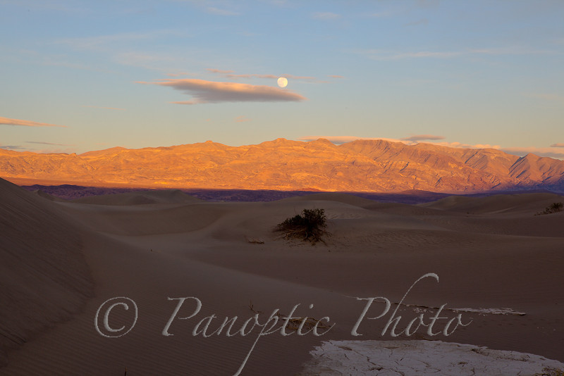Full Moon over Sand Dunes, Death Valley National Park, California