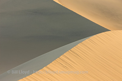 Dune abstraction, Mesquite Dunes, Death Valley National Park.