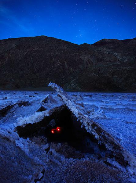 Parody of the Jackalope Death Valley Salt Flats