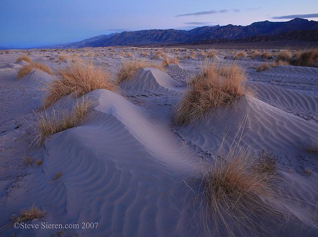 Death Valley Dunes Devil's Cornfield