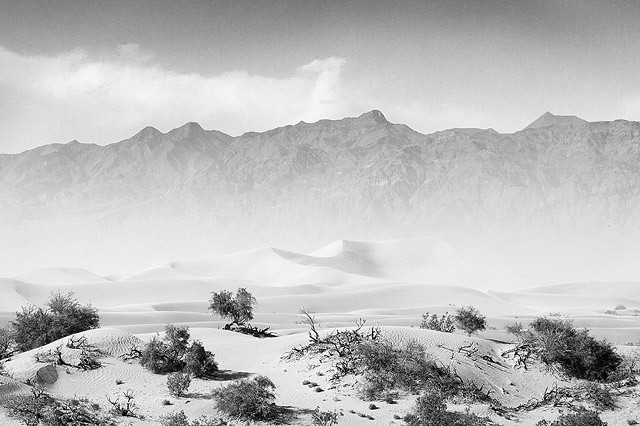 The Sand Storm BW II