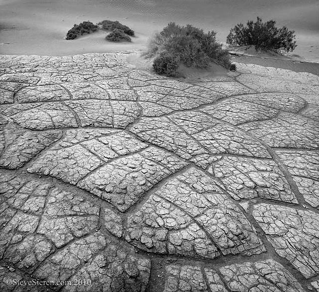 Earth Tiles Playa Death Valley