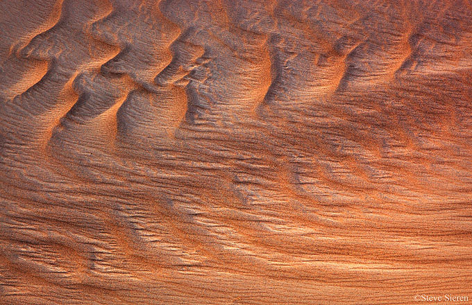 The Sand Box