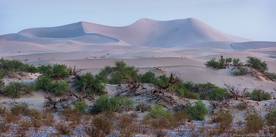 Death_Valley_Pastel_Colored_Dunes