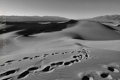 Mesquite Dunes, late PM