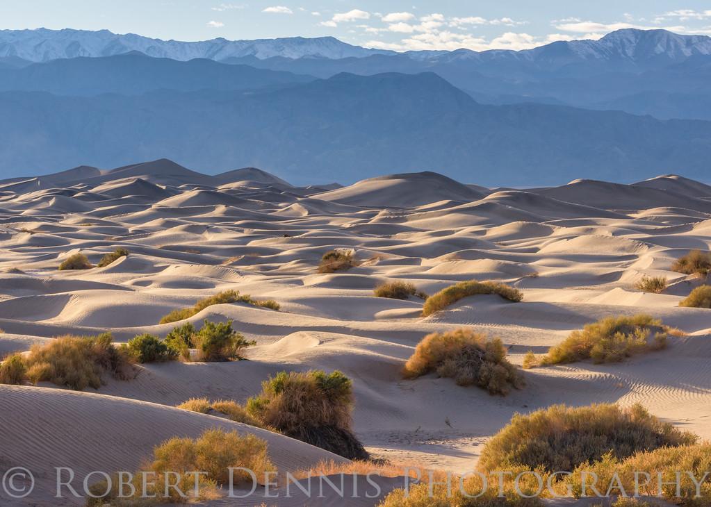 Mesquite Dunes, Death Valley, sunset