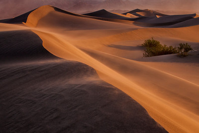 Sand Dune Forming
