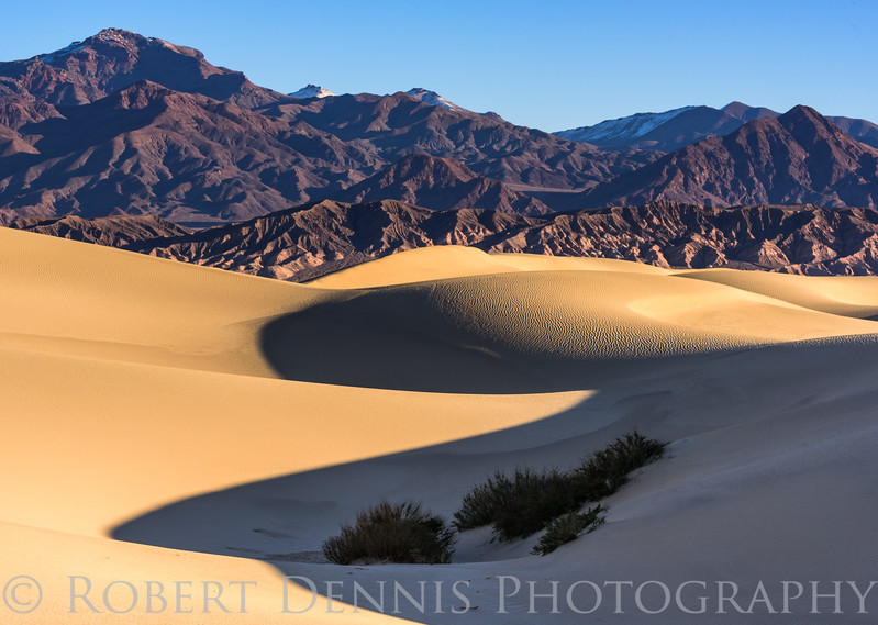 Mesquite Dunes, Death Valley, sunrise