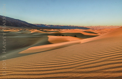 Mesquite Dunes, sunrise - another photographer in the distance who escaped my notice at the time...