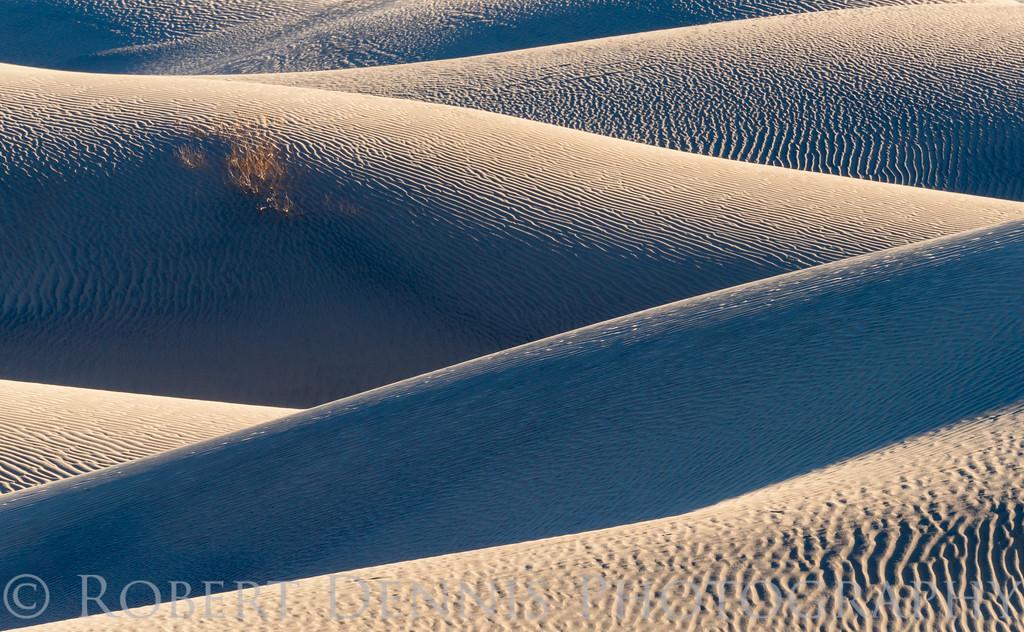 Mesquite Dunes dawn