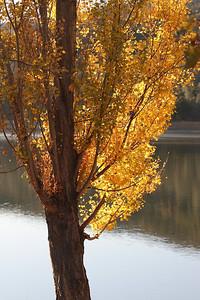 Del Valle morning Nov 3rd 2 of 59
