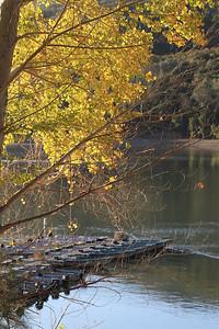 Del Valle morning Nov 3rd 5 of 59