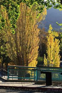 Del Valle morning Nov 3rd 6 of 59