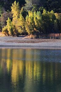 Del Valle morning Nov 3rd 7 of 59