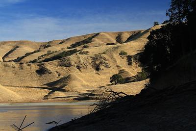 Del Valle morning Nov 3rd 42 of 59