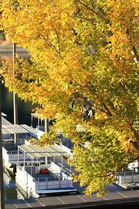 Del Valle morning Nov 3rd 3 of 59
