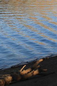 Del Valle morning Nov 3rd 38 of 59