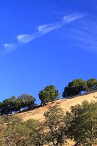 Del Valle morning Nov 3rd 34 of 59