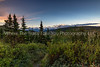 36.  Early Morning In Denali