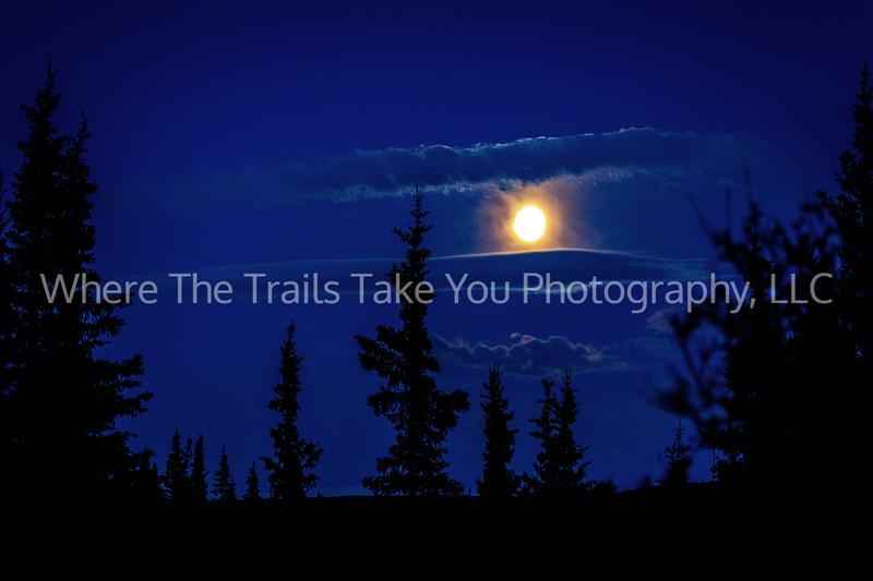 47.  A Moonlit Night in Denali