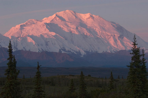 "Denali - ""high"" or ""tall""(Koyukon Athabaskan) - at first light from Wonder Lake Campground. This mountain, when visible, dwarfs everything around it - magnificent sight!"