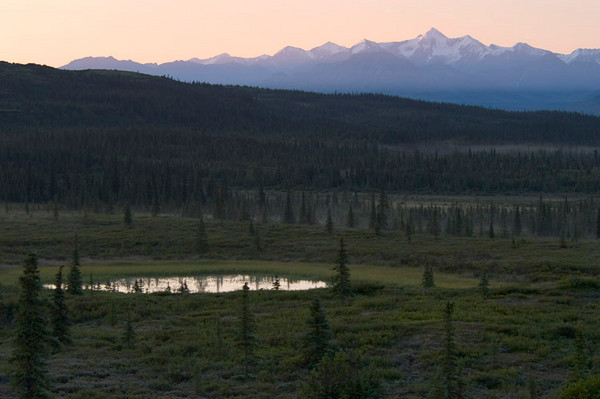 Small pond at daybreak with the Alaska Range in the background.