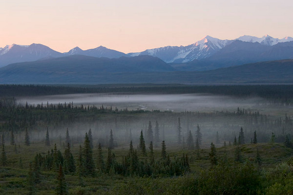 A fog forms over the low-lying wetlands to the east of Wonder Lake Campground as the sun just breaks over the hills to light the Alaska Range.