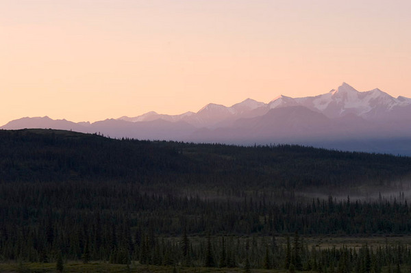 The sun's warming light is just starting to peak over the mountain tops to light the Alaska Range. Denali is just to the right of these mountains.