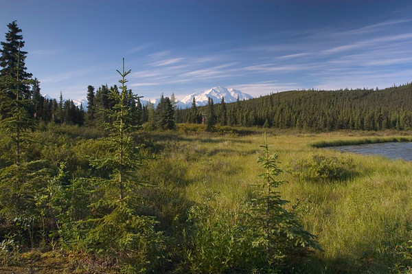 Denali rising over the hills - photo taken from the shore of Wonder Lake (seen at the right of the photo).