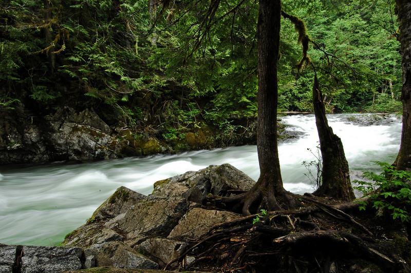 Raging Lower Falls