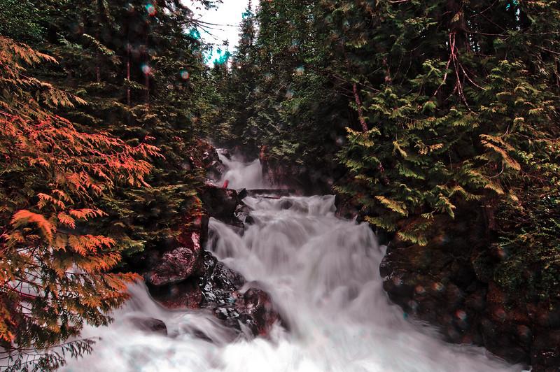 Upper Falls in Spring