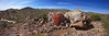 45) Mojave Spring 201604061516