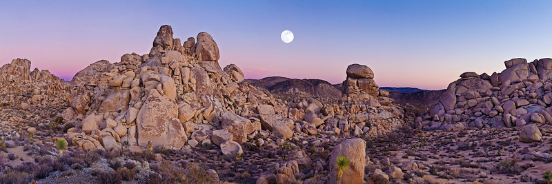 15) Joshua Tree Moonrise 200712221754